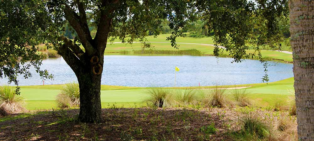 Orlando Area Golf Course Close to Solterra Resort